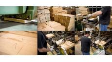 10 шагов древесины на пути от спиленного древа до...